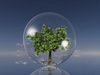 tree in a glass ball