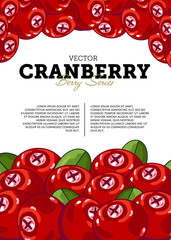 Organic berry banner with juicy cranberry vector illustration. Natural fruit poster, healthy sweet diet, vegetarian nutrition. Fresh berry fruit advertising promo with ripe cranberry and leaves