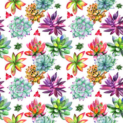 Wildflower succulentus flower pattern in a watercolor style isolated.
