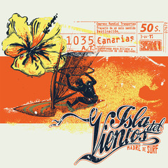 Windsurfer with ticket graphics and hibiscus