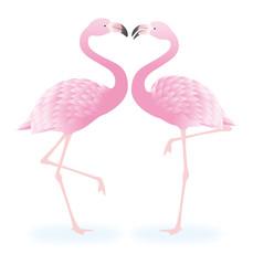 フラミンゴのカップル