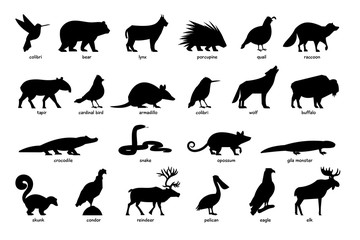 Large set of silhouettes of animals of North America