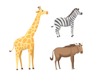 African animals cartoon vector set. elephant, rhino, giraffe, cheetah, zebra, hyena, lion, hippo, crocodile, gorila and outhers. safari isolated illustration