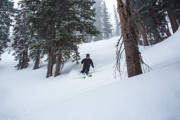 Skier descending snowy slope by trees