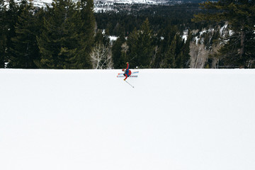 Aerial view of skier on flat snowy surface