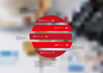 Illustration infographic template with circle horizontally divided to five red standalone parts