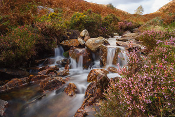 Mountain Stream Cwm Bychan near Beddgelert in Snowdonia National Park Wales