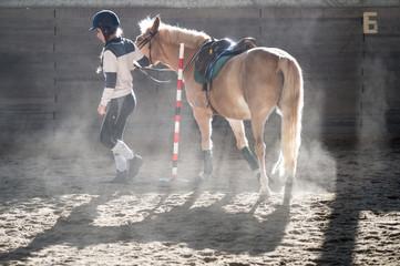 ragazza con il pony game