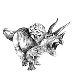 Triceratops dinosaur sketch vector