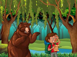 Bear and hiker