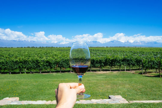 Masculine hand holding glass of wine with Andes and Winery on the Background in Mendonza, Argentine
