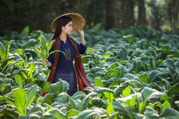 Laos women beautiful portrait farming concept tobacco field thailand is tobacco farm of asian at mekong river side Nongkhai,Thailand.