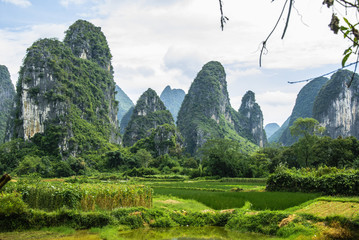 Zelfklevend Fotobehang Guilin Karst mountains and rural scenery in summer