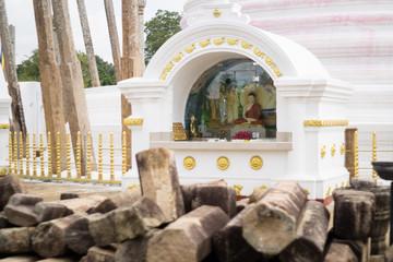 Holy pagoda pf Anuradhapura