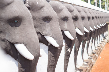 Anuradhapuras elephants
