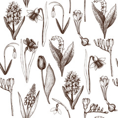 Seamless pattern with hand drawn spring flowers sketch. Botanical illustrations of springtime plants on white background