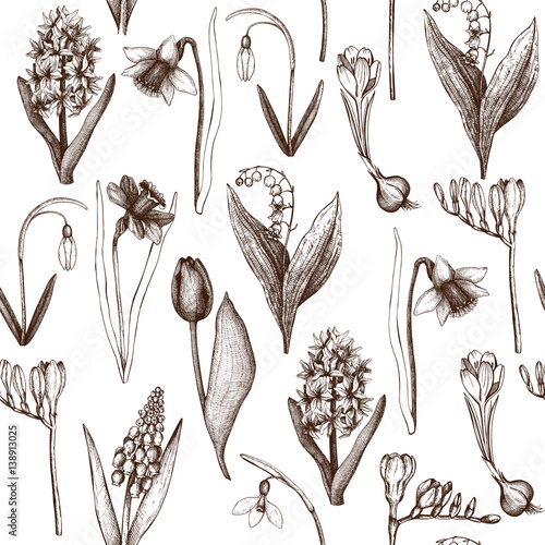 Seamless Pattern With Hand Drawn Spring Flowers Sketch Botanical Illustrations Of Springtime Plants On White