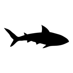 Black shark silhouette on white