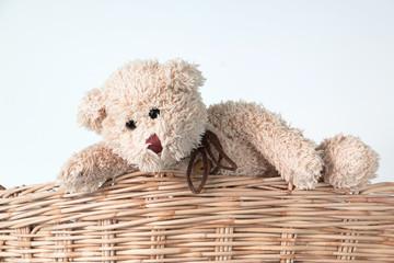teddy bear climbing  on basket