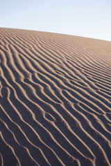 Foto auf AluDibond Marokko duna di sabbia