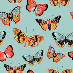 Butterfly moth colorful seamless pattern