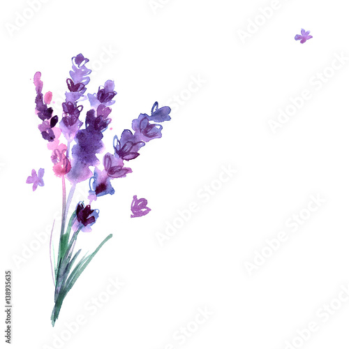 """Lavender Background Wedding: """"Watercolor Hand Painted Lavender Flowers On White"""