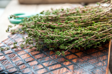 A bunch of fresh thyme on a wooden board