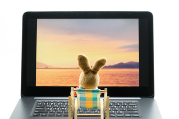 Rabbit doll relaxing on beach chair looking at photo on laptop, Isolated on white background.