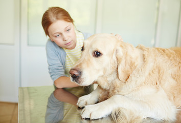 Red-haired girl petting and soothing her scared dog lying on table in vet clinic before treatment