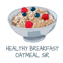 Vector illustration of oatmeal on white background.