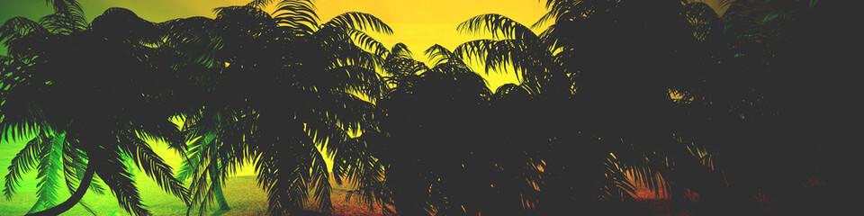 Panorama of tropical beach. an island in the ocean.
