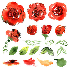 Cute watercolor flowers. Roses. Elements for invitation, wedding card, birthday card.