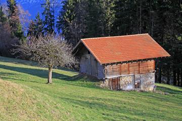 hütte,berner-oberland, schwaeiz