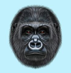 Illustrated portrait of Gorilla male