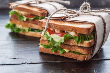 Aluminium Prints Snack delicious homemade sandwich in rustic style