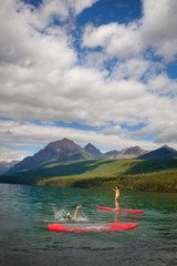 Two people  paddle boarding, one's fallen in