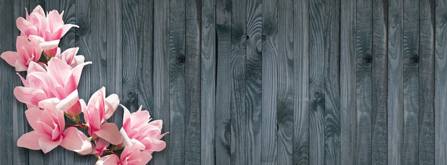 Background with magnolia flowers on wall of wooden planks
