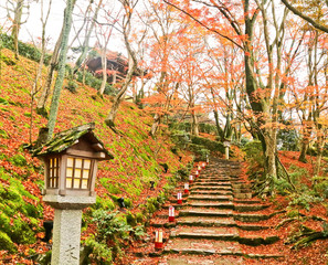 View of the Japanese park in autumn in Kyoto, Japan.