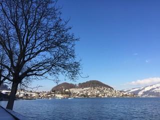 Faulensee am Thunersee in der Schweiz