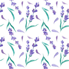 Watercolor vector pattern with Lavender. Hand painting. Seamless pattern for fabric, paper and other printing and web projects.