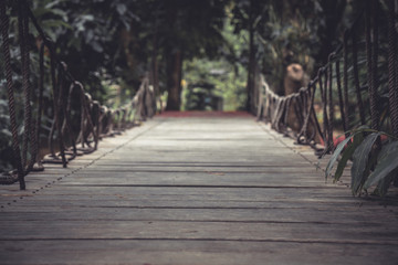 Vintage style wooden pathway in dark tropical forest with vanishing point