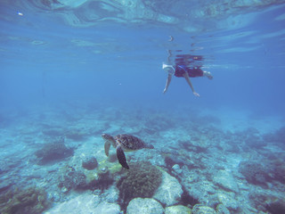 Snorkel with sea turtle. Woman swims undersea in swimming costume and full-face mask.