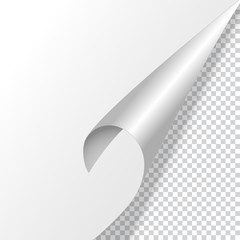 Curved corner of a white paper with shadow. Mock-up on a transparent background. Vector, eps10.