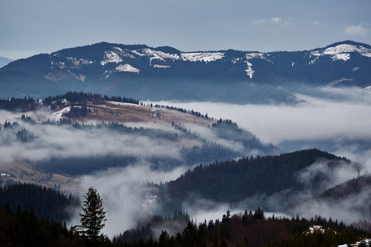 Beautiful view of the blue winter mountains and hills in Carpathians on the sunrise