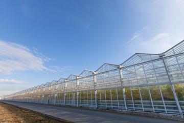 Großes modernes Glashaus 3 Hektar