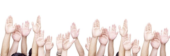 group of people showing their hands, isolated on white background.