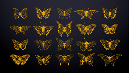 Set of gold butterflies, ink silhouettes. Glowworms, fireflies and butterflies icons isolated on black background. Hand drawn separated editable elements, Vector illustration.
