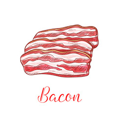 Bacon strip isolated sketch with pork meat slice