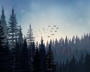 Pine forest landscape background