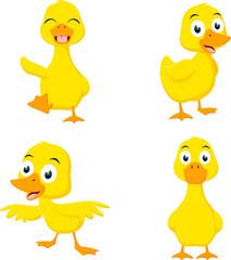 Happy duck cartoon collection set